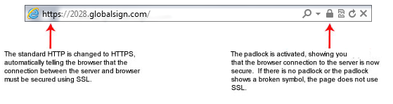 Standard SSL Certificates (such as GlobalSign DomainSSL and OrganizationSSL)